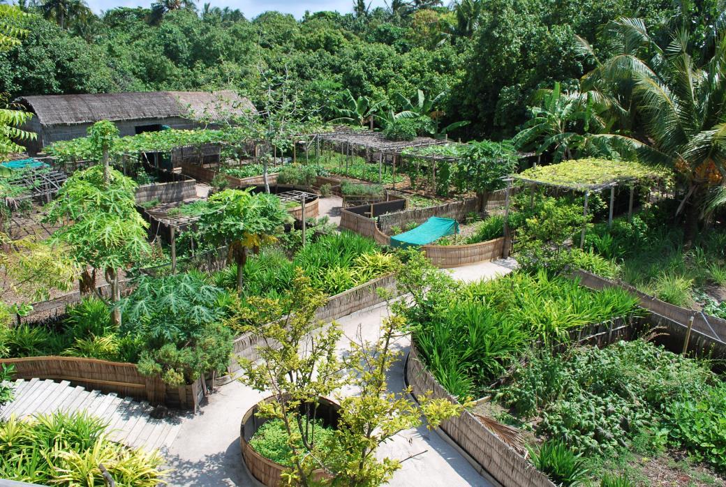 permaculture-design.jpg
